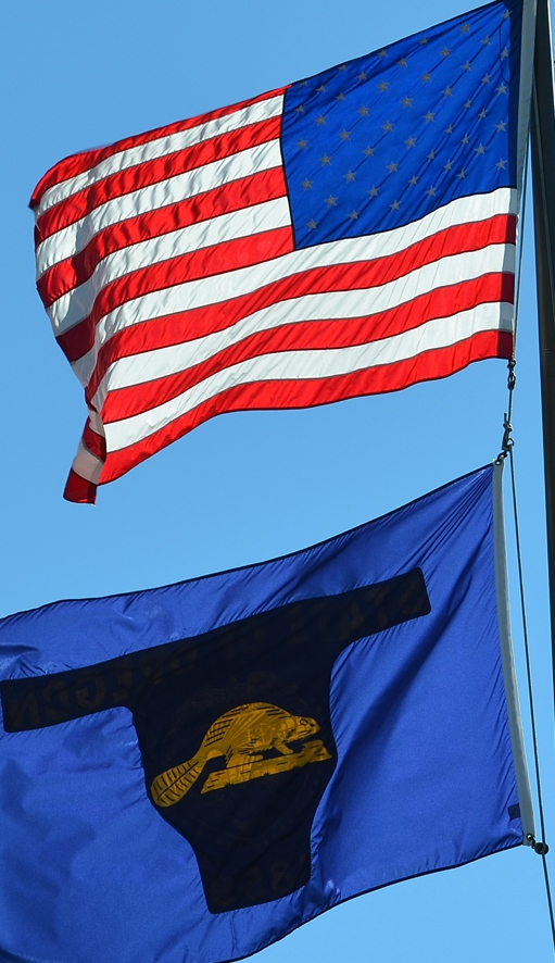 US and State Flags cropped